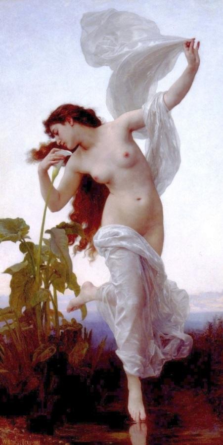 dawn-1881